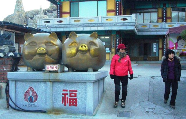 海東龍宮寺 金の豚