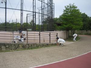 2013中学野球2