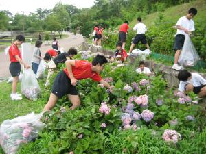 2013緑のボランティア