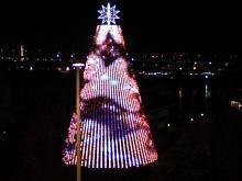 DTP屋ブログ-tree2