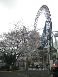 DTP屋ブログ-kourakuen1