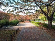 DTP屋ブログ-2010-11-15