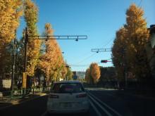 DTP屋ブログ-2010-11-29