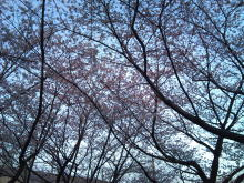 DTP屋ブログ-2011-04-07_3.jpg