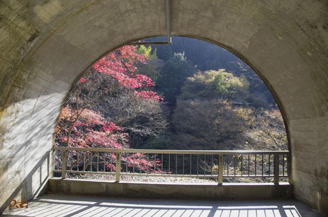 20131116袋田の滝11