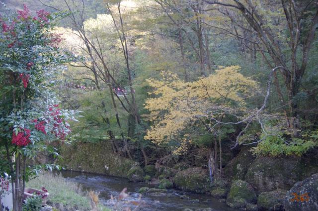 20131116袋田の滝05