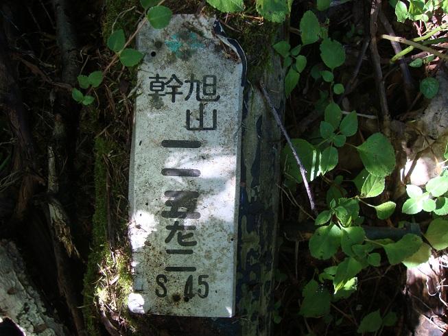 064.jpg