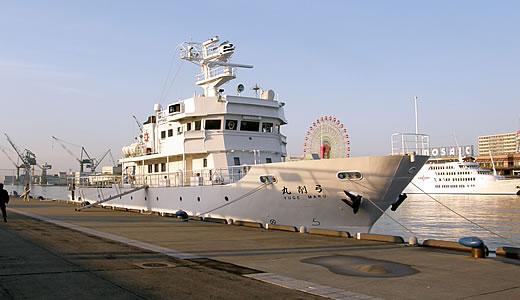 クルーズ客船 CALEDONIAN SKY初入港-4