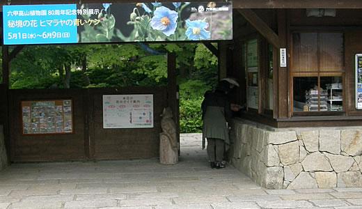 六甲高山植物園2013初夏-1