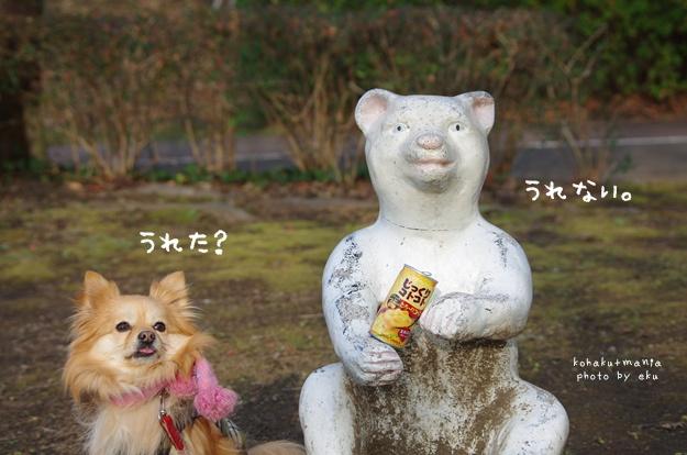 ko-nsu-pu.jpg