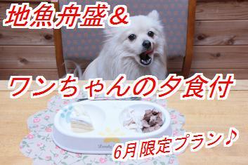 6gatu1_20130520021453.jpg