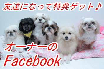 fbo.jpg