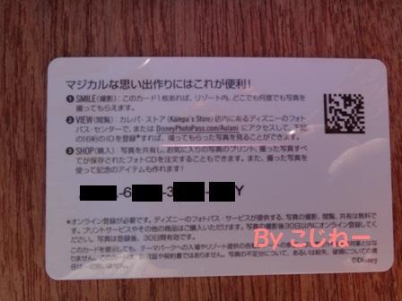 DSC00482_20120118193427.jpg