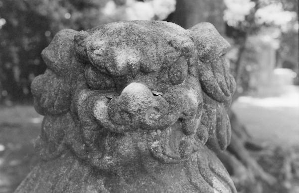 熊野神社(さいたま市見沼区片柳)4