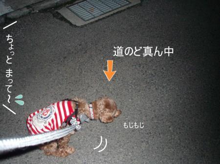 000001367165_convert_20120419084036.jpg