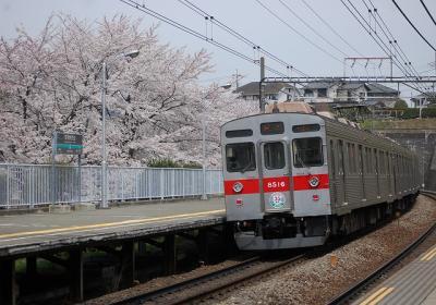 桜×8616F(新玉川線開業35周年HM)