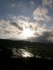 バリ島東部、ティルタガンガ