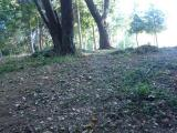 竜大山 山頂は草刈清掃がされています。