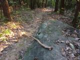 急勾配地 杖があると登り易く 休憩岩 いい場所にあり…