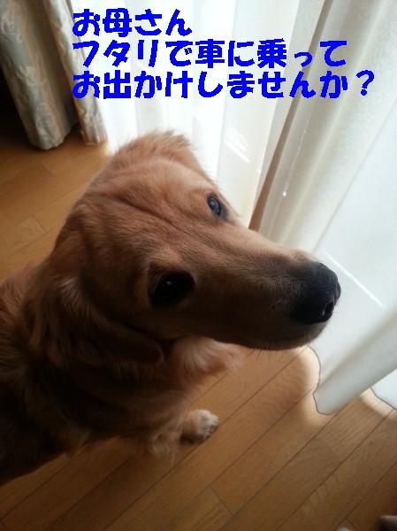 bu-10059a0001.jpg