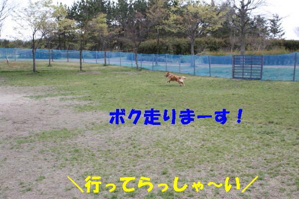 bu-100670001.jpg