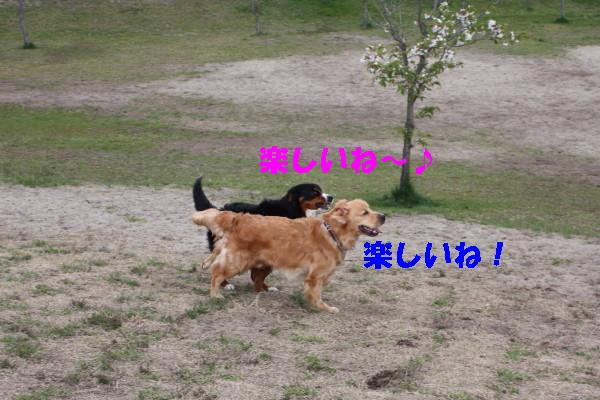bu-100770001.jpg