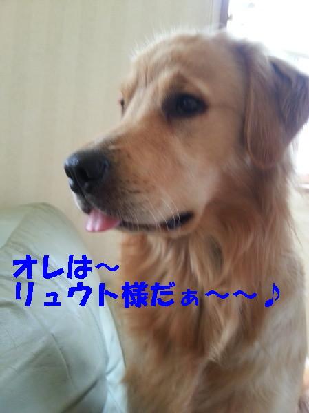 bu-100870001.jpg