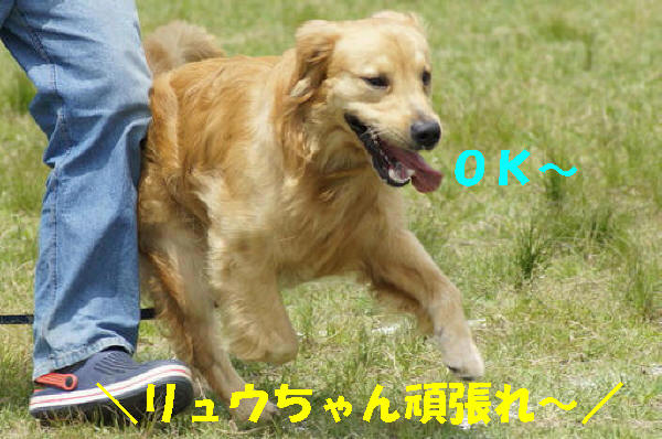 bu-101850001.jpg