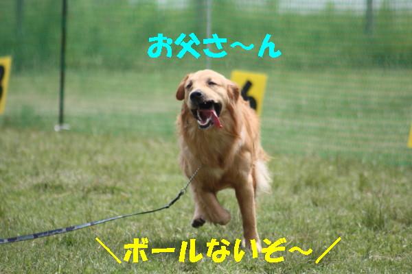 bu-101880001.jpg
