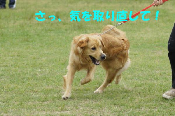 bu-101900001.jpg