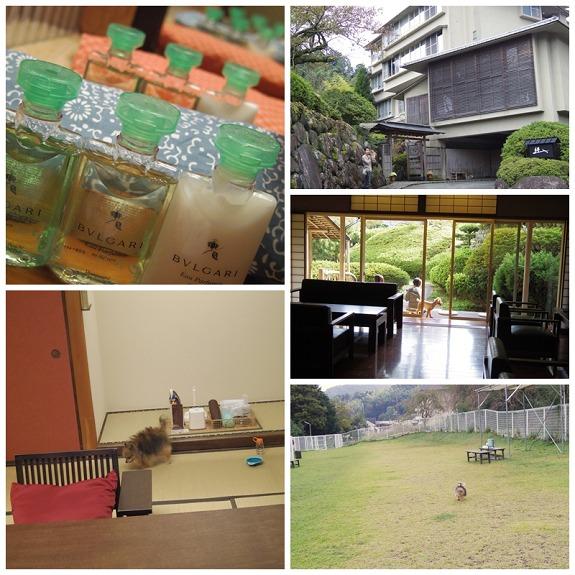 kizuna3_M.jpg