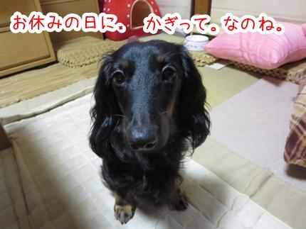 IMG_0923_4.jpg