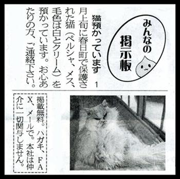 ぶーこ記事2013.1.27