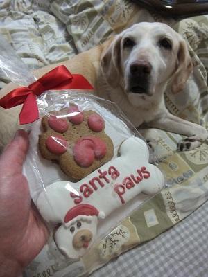 クッキーのおやつ