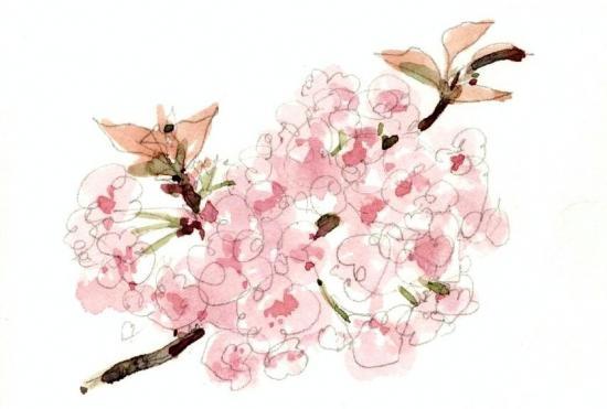 縺輔¥繧会シ点convert_20120411152823