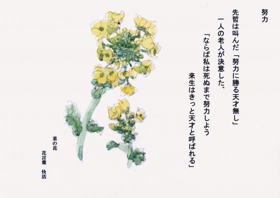 001+-+繧ウ繝斐・_convert_20120426232511