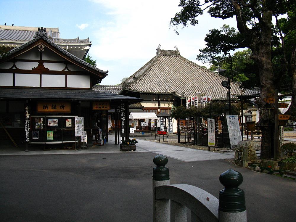 2011_10_29 028