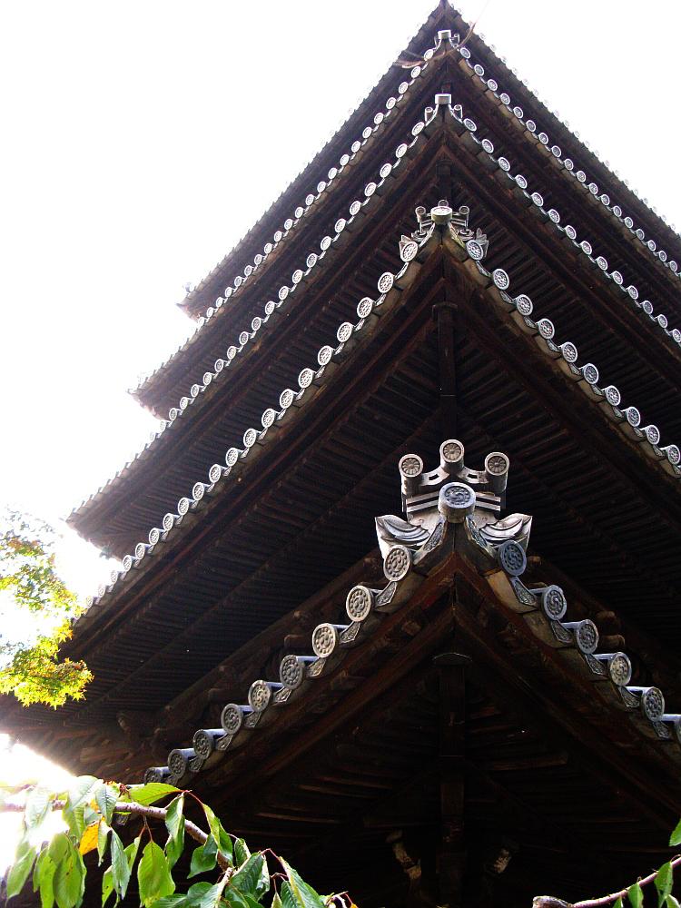 2011_10_29 037