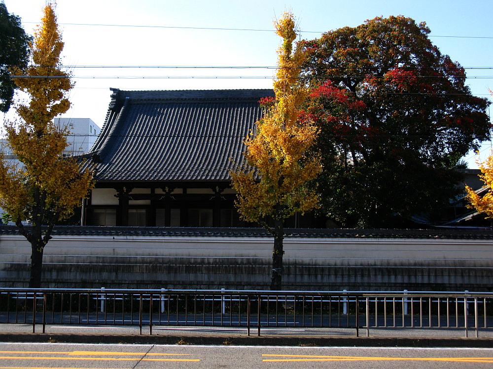 2011_12_14 087