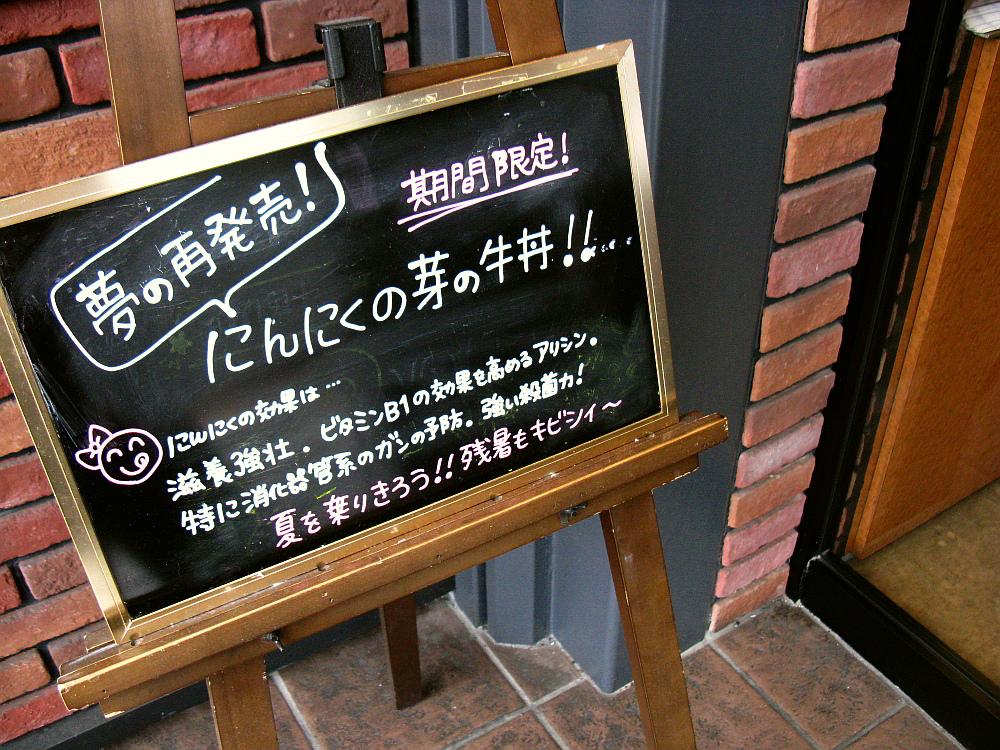 2011_08_19 004