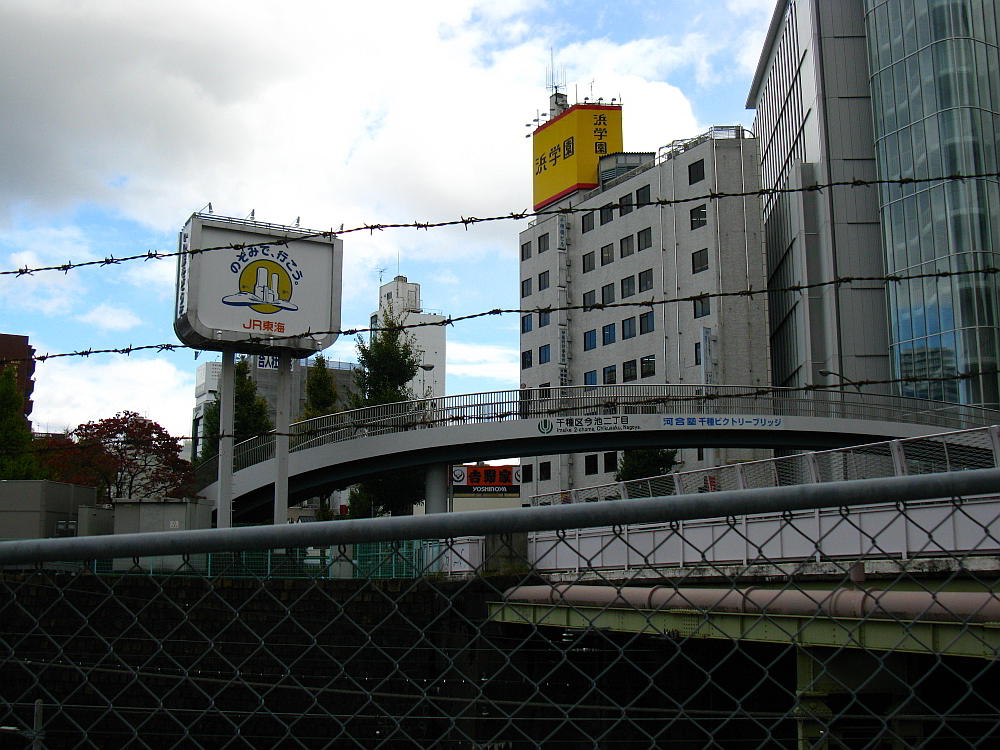 2011_11_21 047