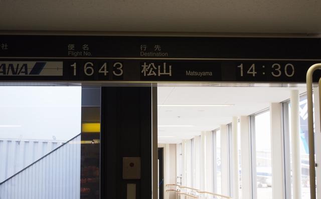 P4130198.jpg