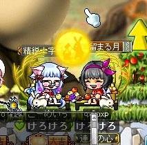 Maple130115_013218.jpg