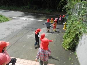 Sakuranbo2013_318