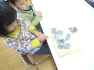 Sakuranbo2013_033