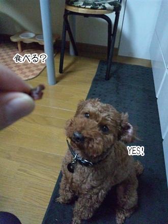 003_20111026001908.jpg