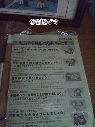 012_20111114224938.jpg