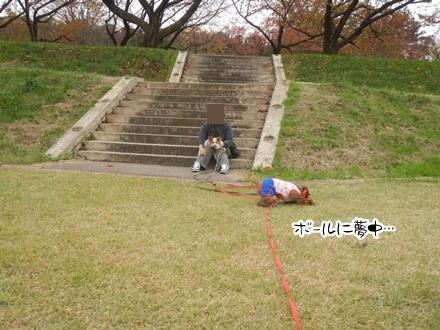 039_20111102235041.jpg