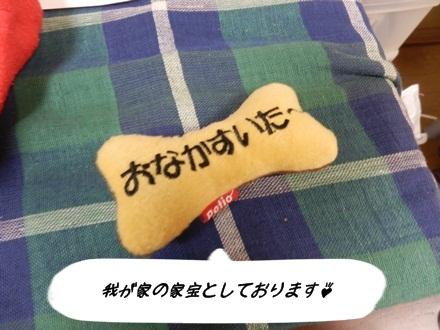 009むっくちゃん
