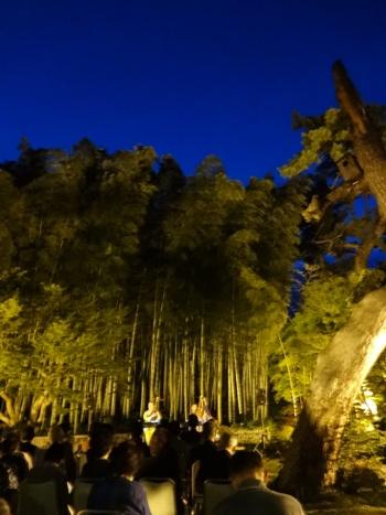 本番、ライトアップされ幻想的な竹林